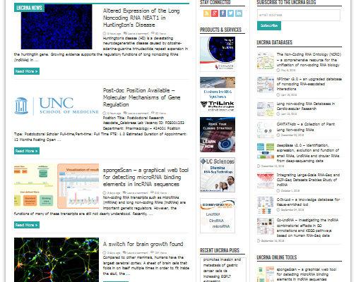 lncRNA Blog